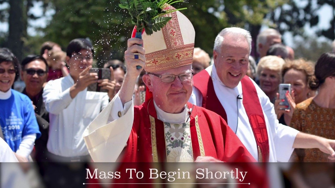 ROMAN CATHOLIC DIOCESE OF ORANGE INTRO FACEBOOK VIDEO