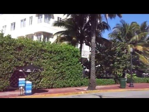 South Beach - Washington Avenue