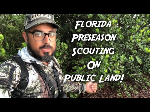 Florida Public Land WMA Preseason Scouting. Things To Look For! (Swamp N Stomp Ep. #69)