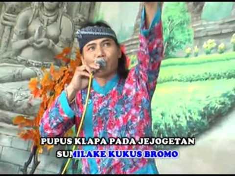 Jithul S - Kembang Probolinggo (Official Music Video)