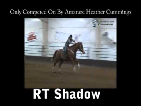 Rt Shadow Barrel Racing Horse For Sale Youtube
