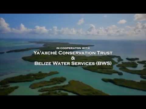 Caribbean Aqua-Terrestrial Solutions (CATS) in Belize