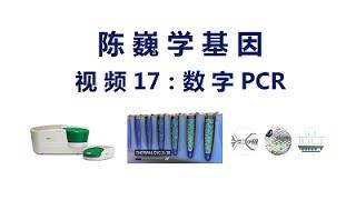 【陈巍学基因】视频17:数字PCR