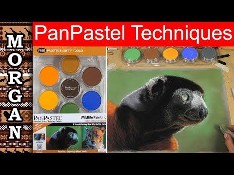 Pan Pastels Techniques Tutorial : Jason Morgan Wildlife Art