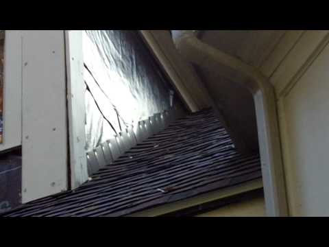 Common Roof Gutter Dormer And Fascia Leak Issues By G F