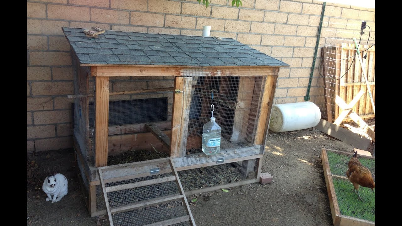 cheap chicken coop youtube