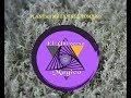 Plantas Mágicas - El Tomillo