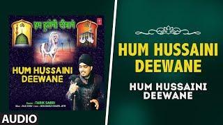 ► Hum Hussaini Deewane (Audio) : Tarik Sabri || Latest Video Song 2018 || T-Series Islamic