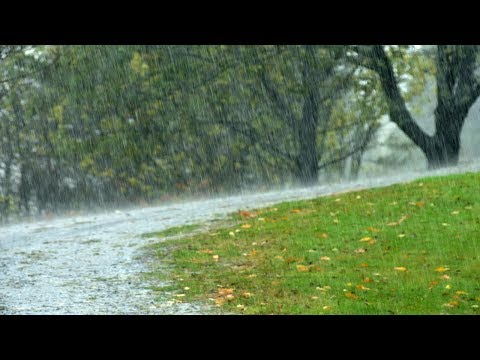 White Noise, Gentle Rain, Relaxing Sounds, Nature Sound, Sleep Sounds, Insomnia Help, �