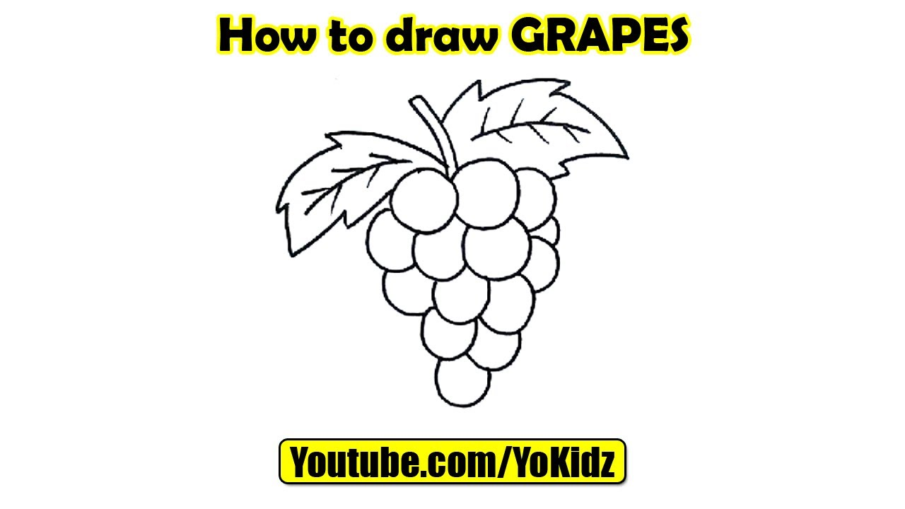 How to draw GRAPES - YouTube for drawing grapes easy  570bof