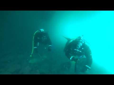 2020.5.30 Dive Against Debris[海中清掃]