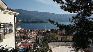 Стрим Иммиграция в Черногорию 2020 Ответы на вопросы 2