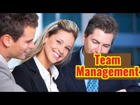 Team Management - Video Training Course   John Academy