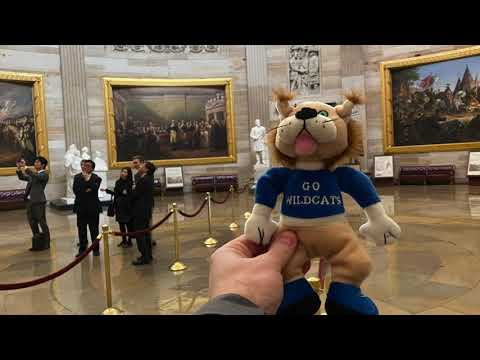 Ivy Hall Elementary School's Blue Ribbon Award - Willy Wildcat's Trip to Washington DC