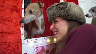 Dog Kissing Booth|4|Best of Jenna Marbles|Julien|Funny|Cute|Comedy|Reaction|Trending|Vlogger|Video