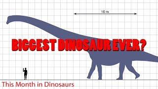 biggest dinosaurs ever found
