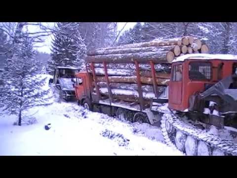 timber truck камаз лесовоз сортиментовоз
