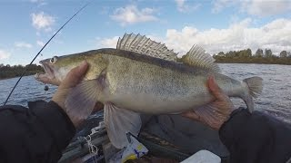 Рыбалка на крупного судака осенью, удачная рыбалка. Ловля судака на джиг, ультралайт в октябре.