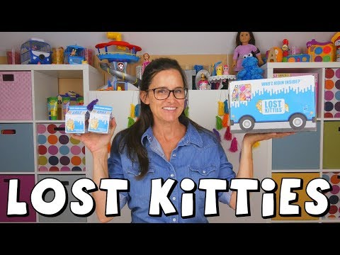 Lost Kitties  New Surprise Toys from Hasbro  DCTC Amy Jo Toy Unboxing