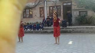 Choli ramro palpali dhakako-dance covered by seraphims public school kalimati