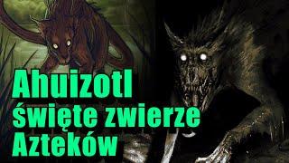 Ahuizotl, zaginione święte zwierze cywilizacji Azteków
