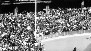World Series Baseball matches between Saint Louis Cardinals and New York Yankees ...HD Stock Footage