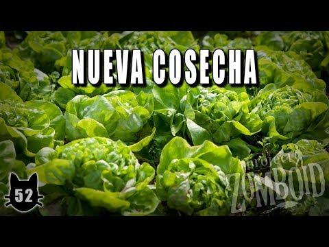 "PROJECT ZOMBOID [Build 38.30] - #52 ""Nueva cosecha"" - Gameplay Español"