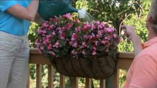How To Decorate A Deck | Avantgardendecor.com