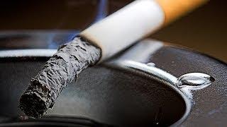 Курение: чем опасная никотиновая зависимость? Школа здоровья 05/04/2014 GuberniaTV(Курильщиками сегодня можно назвать 60% российских мужчин. В России курит каждая 10-я женщина, почти половина..., 2014-04-04T04:31:08.000Z)