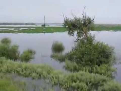 Наводнение в Благовещенске. ЗА 3-м Владимирским озером! 2. Flooding in Blagoveshchensk.