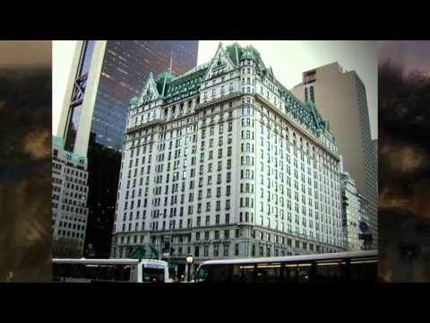 New York Hotels: Find Your Perfect Hotel In New York