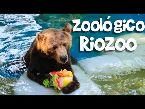 Zoológico do Rio de Janeiro - Knowing the Zoo Brazil