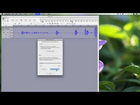How to Clean Up Audio with Audacity