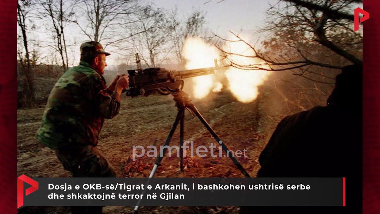Download Dosja e OKB-së/Tigrat e Arkanit, i bashkohen ushtrisë serbe dhe shkaktojnë terror në Gjilan
