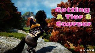 Bdo Change Horse Skills - ccwlounge com