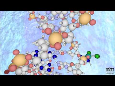 The Mechanism of Cisplatin (New -HD)