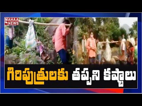 గిరిజనులకు తప్పని డోలి మోతలు: Pregnant Woman Carried In The Doli For 4Kms | MAHAA NEWS
