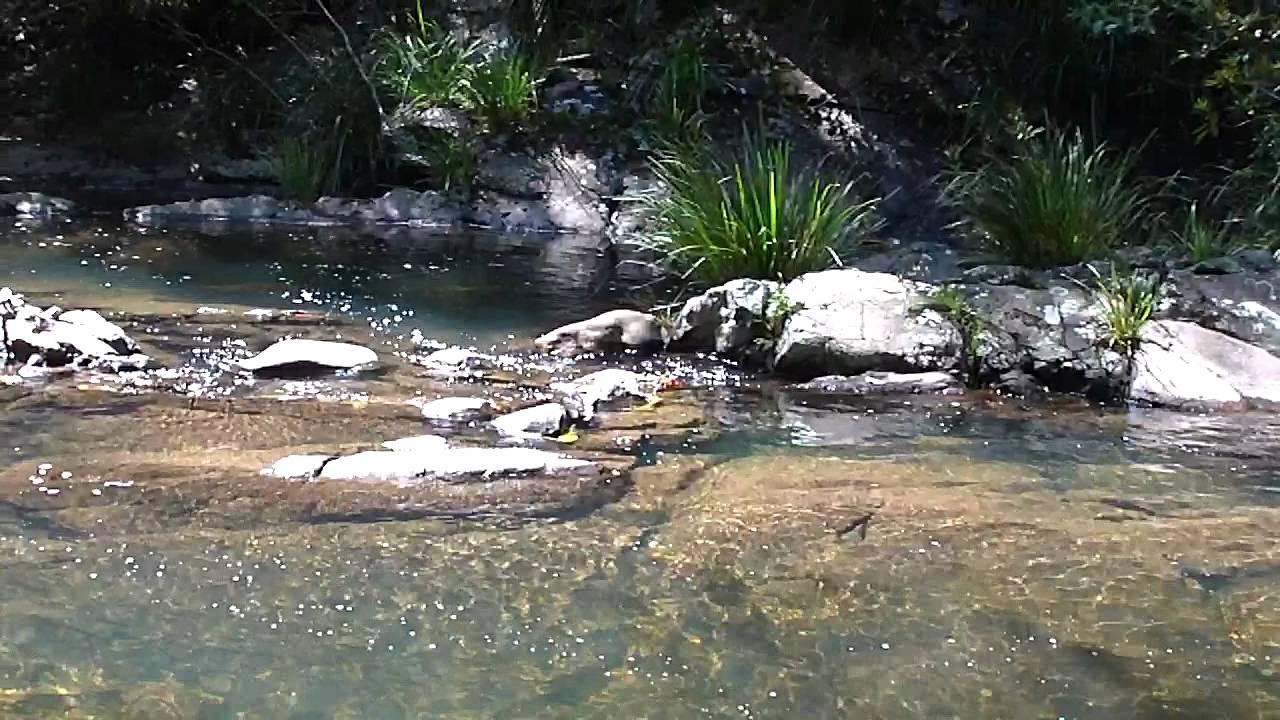 Frying Pan Swimming Area Youtube