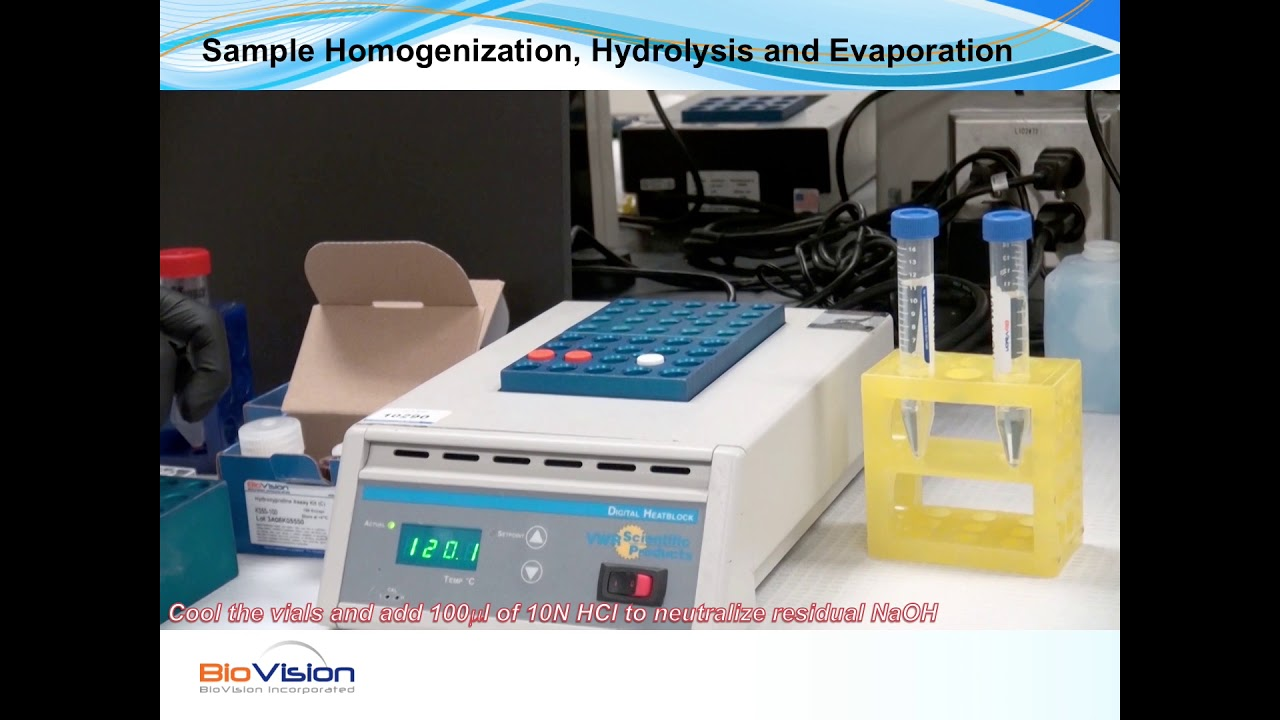 Hydroxyproline Assay