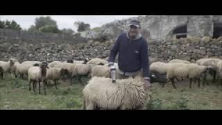 Cosa accade prima che un ospite arrivi in Puglia?