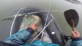 сборник рыбалки за лето и осень