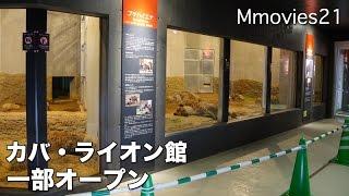 円山動物園の新施設、アフリカゾーンのカバ・ライオン館。 2015年12月23...