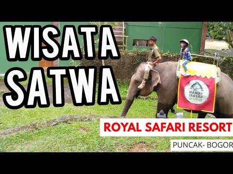 wisata-satwa-di-royal-safari-garden-puncak-bogor