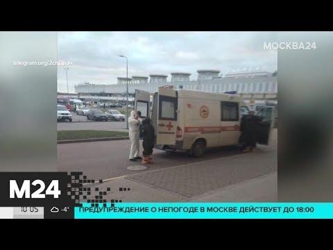 В связи с распространением коронавируса в аэропортах проверяют багаж пассажиров из Китая - Москва 24