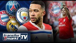 Memphis will Top-Klub-Wechsel – Bayern an Benfica-Talent interessiert? | TRANSFERMARKT