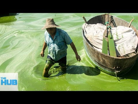 Download Youtube: The Most Polluted Bodies of Water On Earth