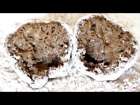 Cómo hacer masa madre ¡de 5000 años de antigüedad!