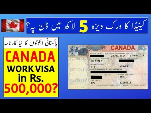 Canada Work Visa In Rs. 500,000 On Done Base?