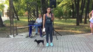 Какие беспородные собаки в Мариуполе стали участниками выставка