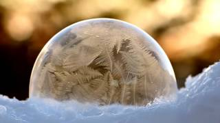 Bubbles Freezing in Slow Motion
